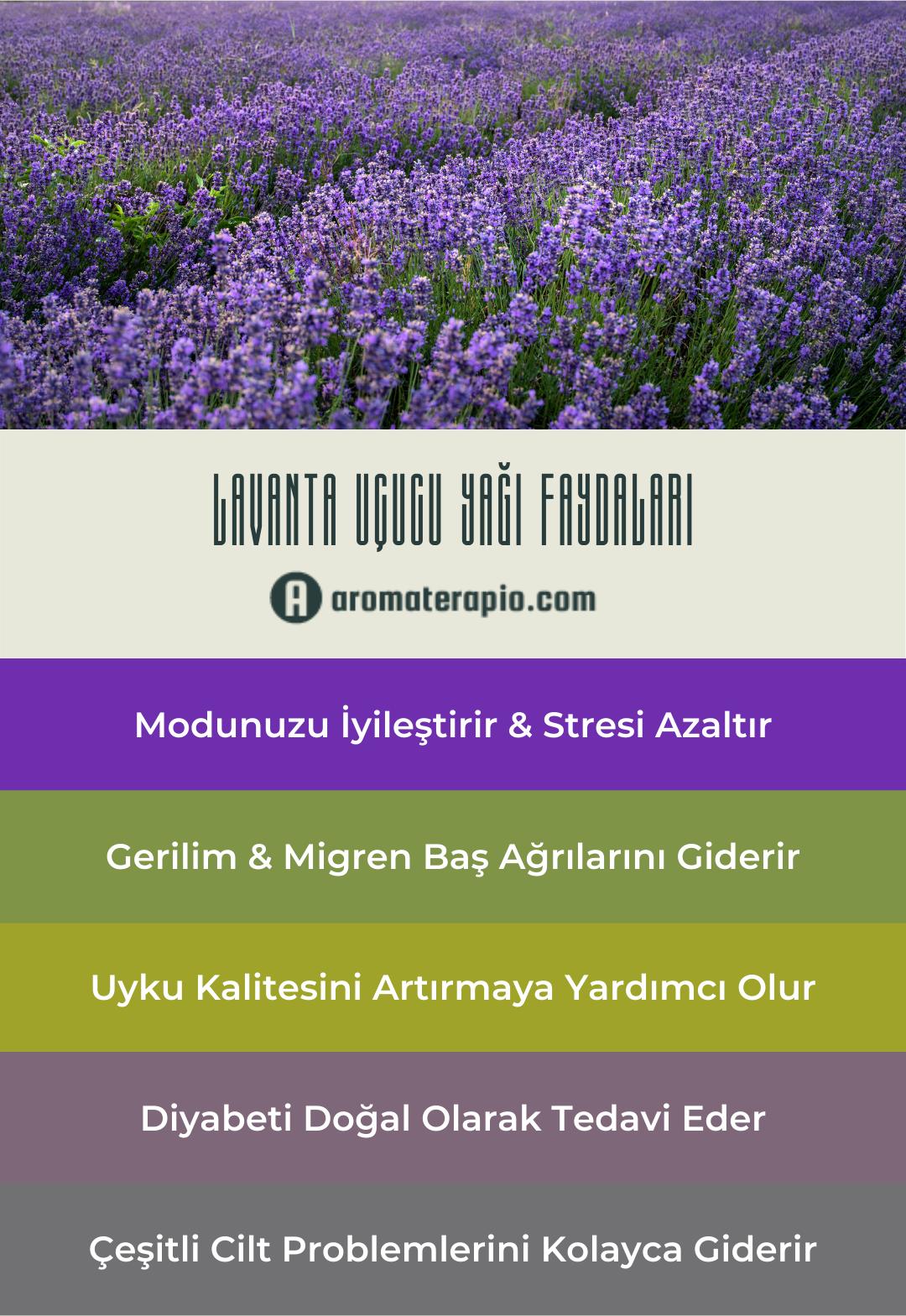 Lavanta Uçucu Yağı Faydaları Infografik - aromaterapio.com