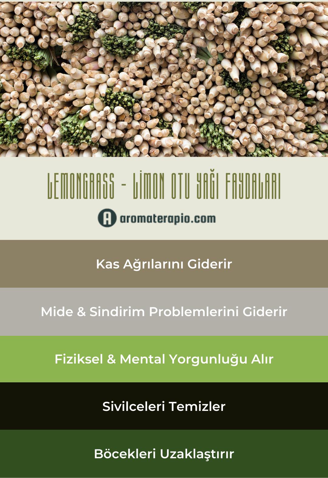 Lemongrass Yağı Faydaları Infografik