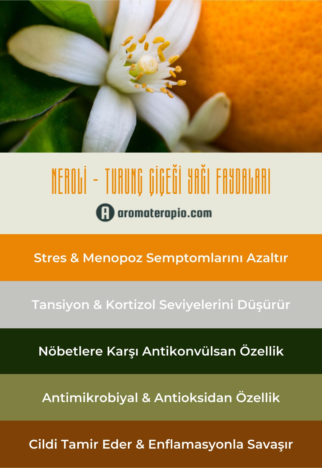 Neroli Turunç Çiçeği Yağı Faydaları Infografik - aromaterapio.com