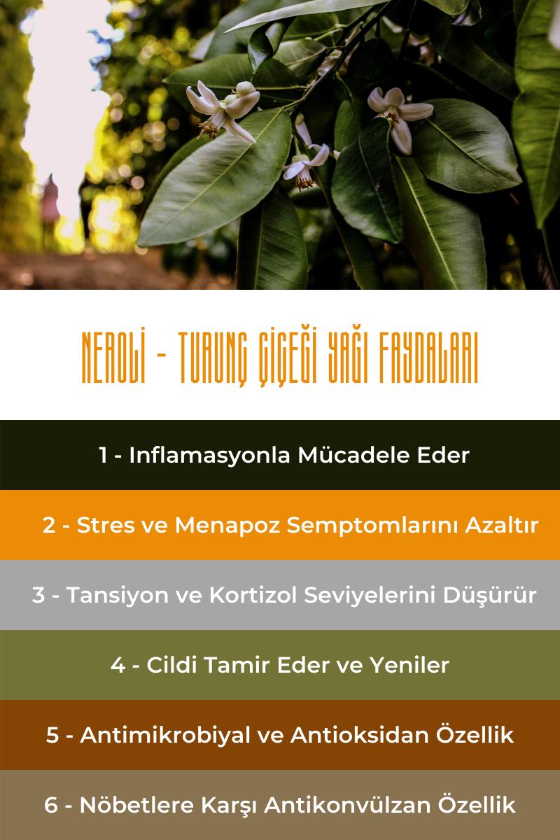 Neroli - Turunç Çiçeği Yağı Faydaları Infografik