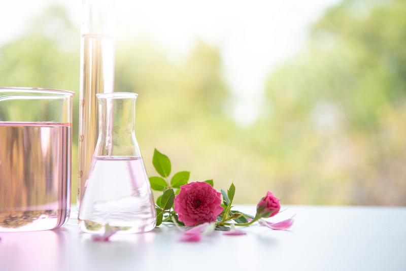 Gül Çiçeği Uçucu Yağı - Gül Suyu