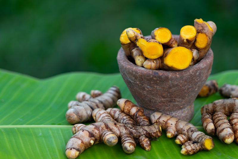 zerdeçal-uçucu-yağı-curcuma-longa-kökleri